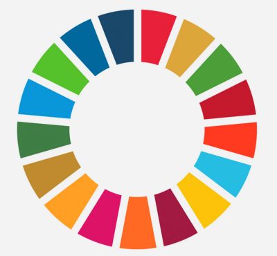 EU and SDGs workshop series